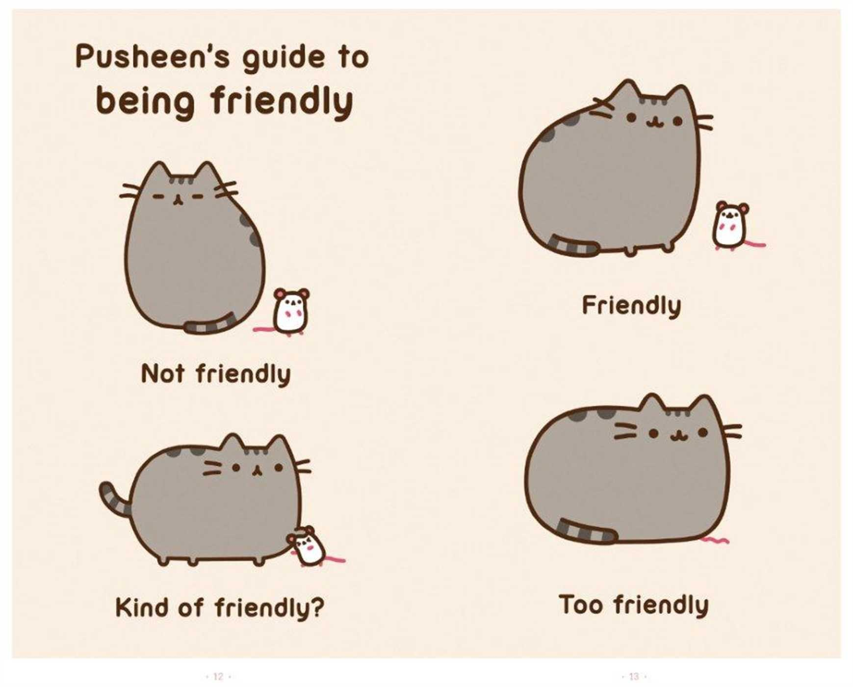 Pusheen the cat japanese plushie